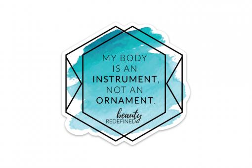 Instrument Not An Ornament Sticker